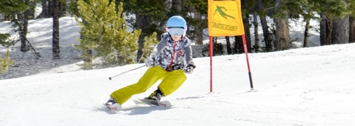 Picture of Junior Ski Race Development